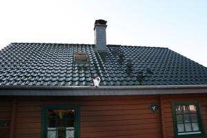 Holzhaus mit dunkelgrünem Dach