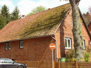 Backsteinhaus mit bemoostem Dach